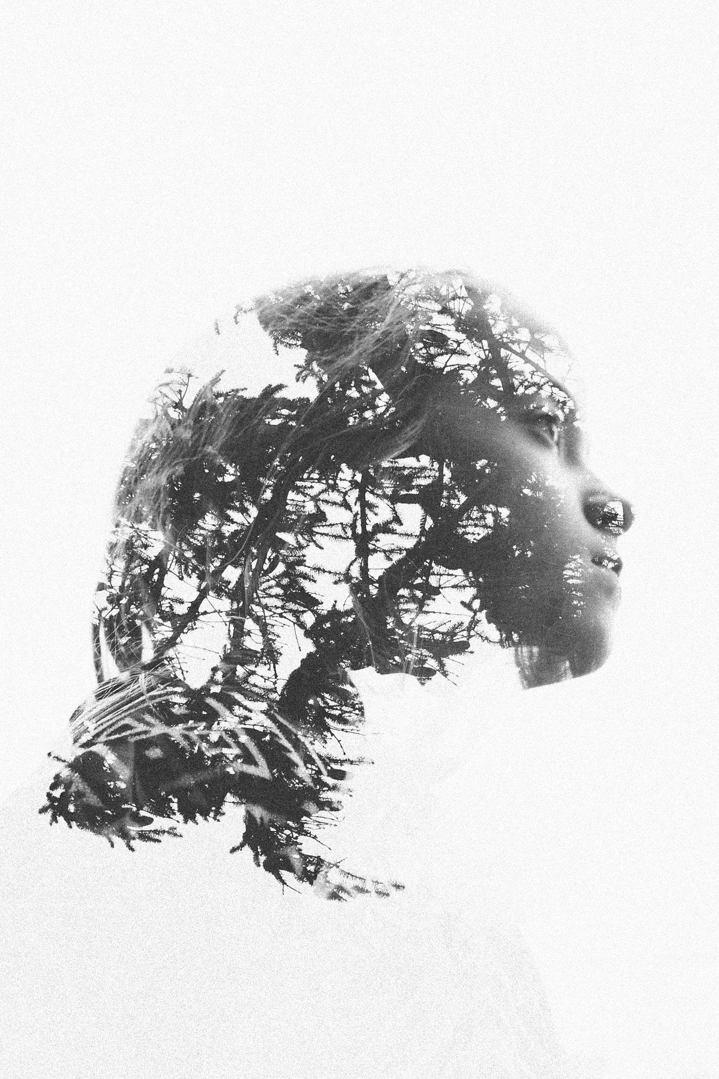 Double exposure with Canon 6D